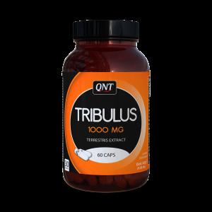 QNT Tribulus Terrestris – 60 caps